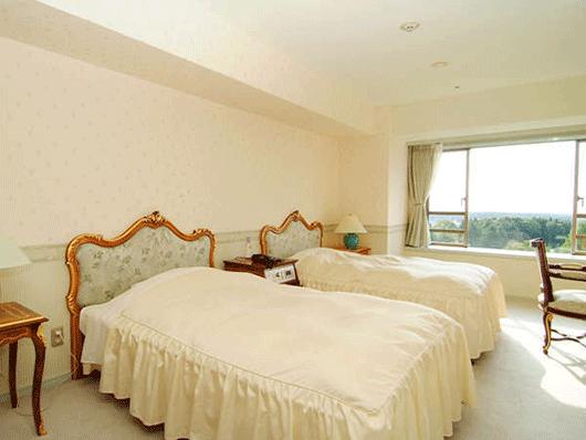 ホテルタイプのお部屋。